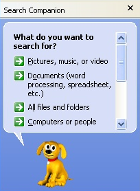 Windows Search Companion